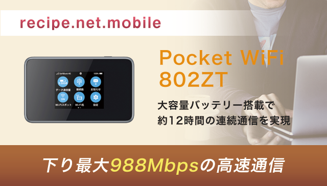 Pocket WiFi 802ZT